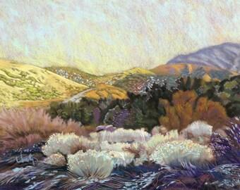 "Pastel Landscape ""Mojave Eulogy"" Limited Print"