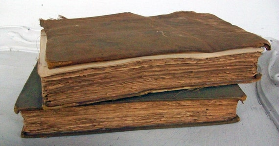 Antique Books French 1895  Beautiful Illustrations