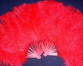 Single-Layer Ostrich Plume Fans (Medium)