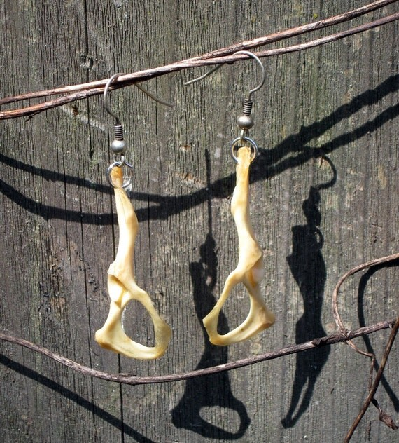 Animal Bone Earrings Hip Bones