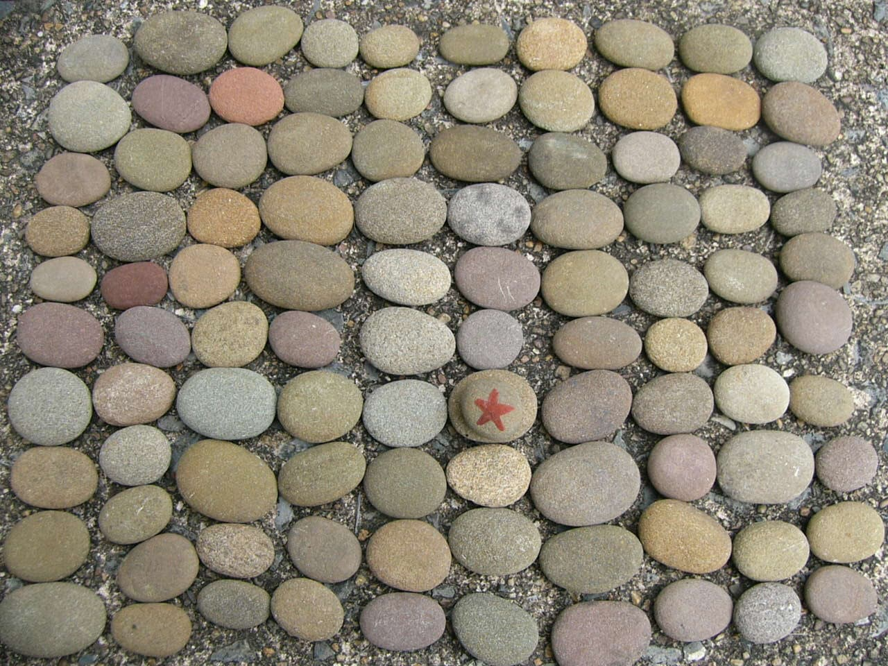 Small river rocks very nice flat oval natural creek rocks 100 for Small river pebbles