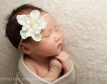 Vanilla Delight Delphinium Flower with Cream Pearl Center Headband Photography Props