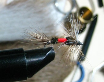 trout fly lure, a dry fly, Royal Coachman, AMERICA'S FLY