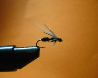 Winged Ant, Wet fly, Dry fly, WONDERFUL, catches when other flies don't
