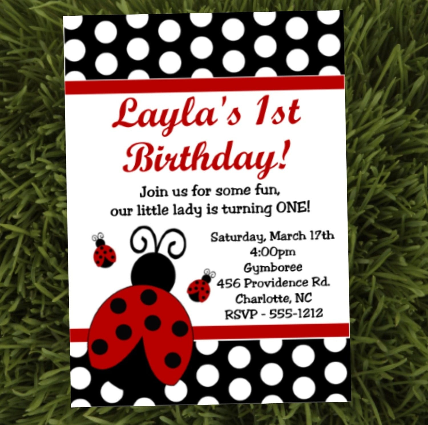 Ladybug Birthday Party Invitations Printable or Printed