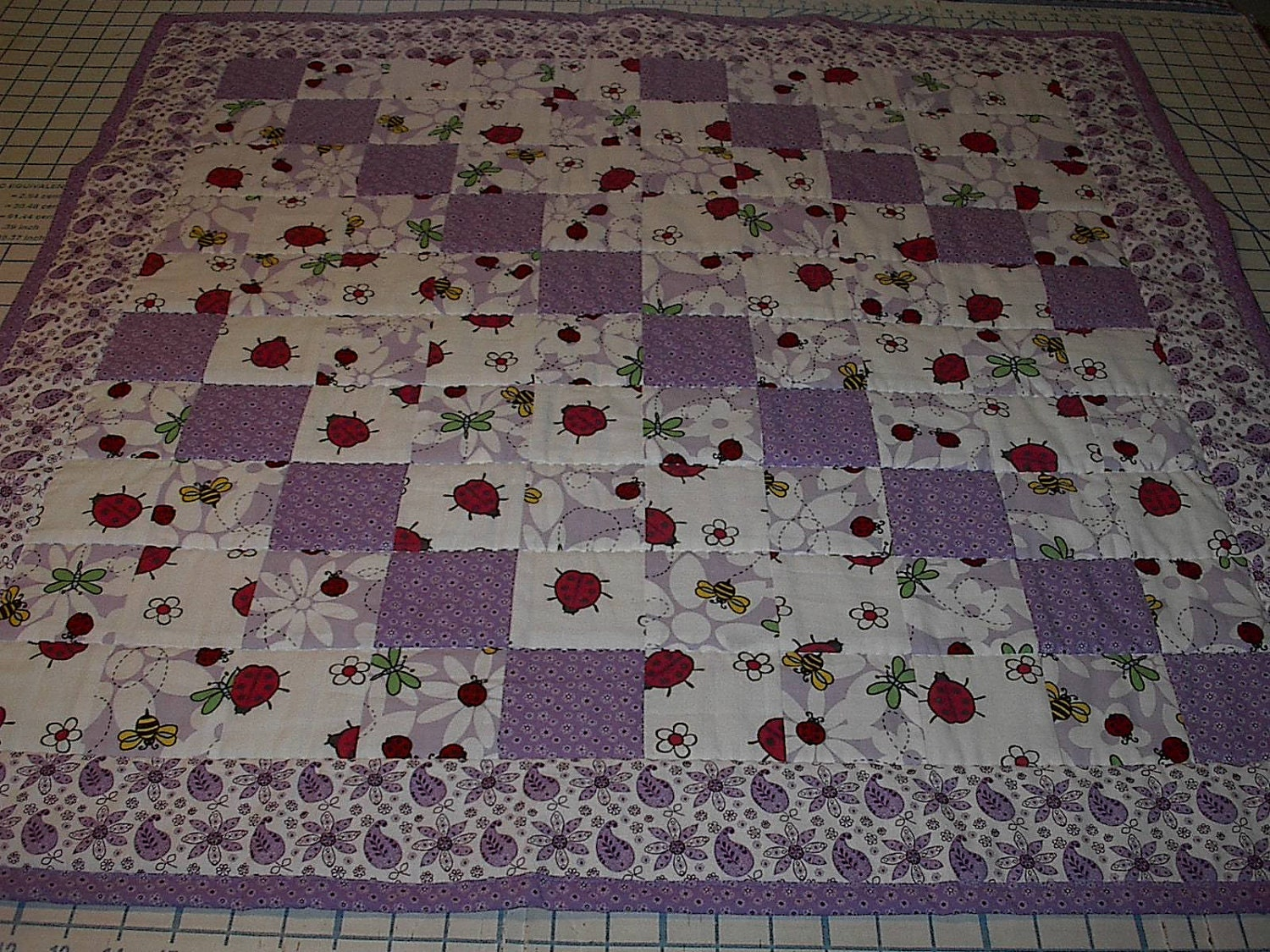 Reserved For Joanne Baby Girl Lady Bug Quilt