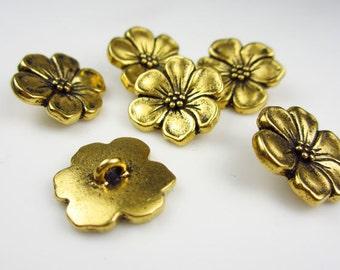 6 Tierracast Gold Apple Blossom Buttons