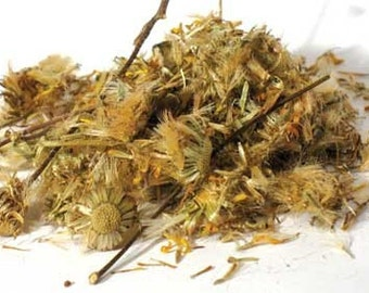 Arnica Flowers a/k/a wolfbane Wicca Pagan Spirituality Religion Ceremonies Hoodoo Metaphysical MaidenMotherCrone