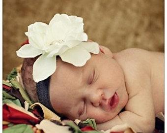 Ivory Flower Baby headband, Brown Elastic, Newborn Headband, flower headbands, boutique headband