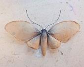 Butterfly soft sculpture. Textile art.