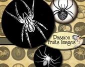"""Dark Vintage Spider Images 1.25"""" Rounds Digital Collage Sheet--Instant Download"""