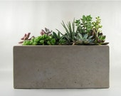 Rectangular Concrete Planter - roughfusion