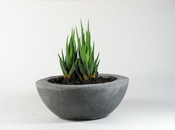 Gray Concrete Bowl