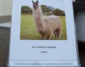 2011 Desk Calendar - Llamas