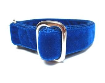 """Houndstown 1"""" Royal Blue Velvet Tag Collar, Adjustable"""