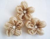 Beige Flower Appliques Embellishments(3 pcs)