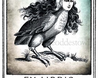 The Harpy Bookplates (Personalized or Blank)