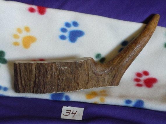 Moose Antler Dog Chew (34)