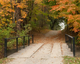 Bridge in October