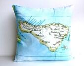 eco friendly cushion cover BALI map cushion, organic cotton pillow, 16x16 pillow, map cushion, map pillow