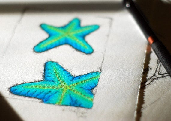 BlueGreen Starfish - Color Pencil on Paper