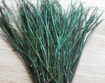 PEACOCK HERL -- 25 Gorgeous Iridescent Green Feather Strands Perfect For Hair Extentions, Crafts or Fly Tying -- FREE Shipping