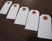 Tags-Blue Tags with Kraft Reinforcement Hole-Set of 10