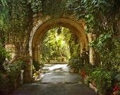 Door photography, green entrance, garden, magical, magical garden, arch, botanical, Jerusalem
