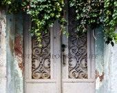 Original photograph - Old door