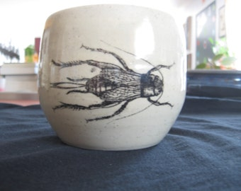 Field Cricket Mug