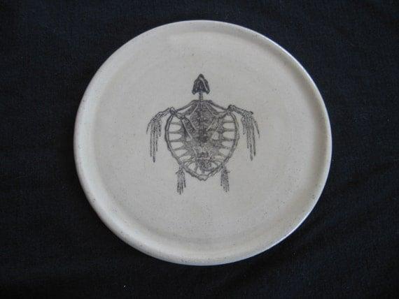 Tortoise Skeleton plate / coaster
