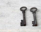 Vintage skeleton keys: Two French keys