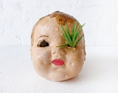 Creepy Cute Antique Doll Head Air Plant Garden