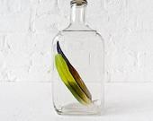 15% SALE - Vintage Glass Bottle - Parrot Feathers
