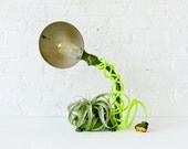 30% SALE - OhMy Lamp Plant - Unique Lighting- Green Foot Vintage Industrial Gooseneck Light w/ Neon Cord and LIVE Air Plant OOAK
