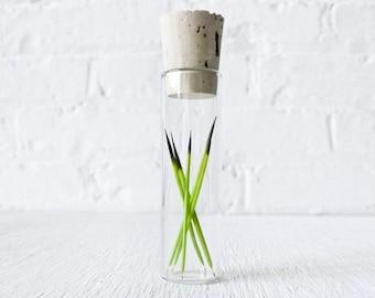 Neon Green Porcupine Quills in Glass Cork Vial