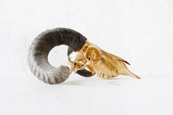 RESERVED for Cheryle - Real Skull - 24k Ram