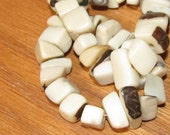 20 Natural White Tagua Nut Beads, Chip Beads, Vegetable Ivory Beads, Organic Beads, Natural Beads, EcoBeads