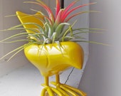 Colorful Canary Airplant, only a few left, color almost sold out