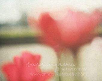 nature decor flower landscape feminine red poppies chartreuse green pink - Elysium -  Fine Art Photography Print