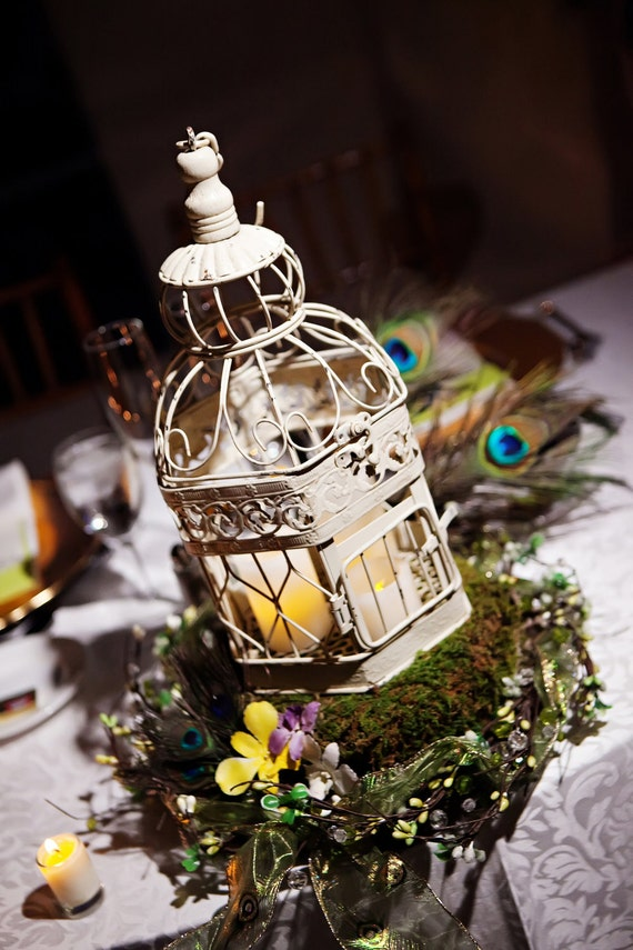 Birdcage Centerpiece with moss covered base and Peacock Feathers