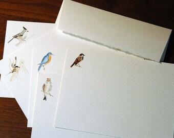 Watercolor bird notecards A - set of 5