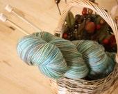 Hand Dyed Yarn / Mocha Blue Moss Green Fingering Weight Superwash Merino Wool NEW
