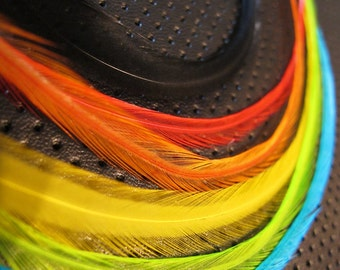 Rainbow Bright - 6 Long Feather Hair Extensions with crimp bead or clip - black, red, orange, yellow, lime green, blue