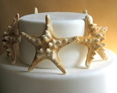 White Chocolate Candy Starfish 8 Edible Decor, Stand Alone Candy, Edible Favor