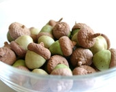 Chocolate Cocoa Bean Candy Acorns 25 - Cake Decoration / Stand Alone Candy / Gift - Featured in the Huffington Post-