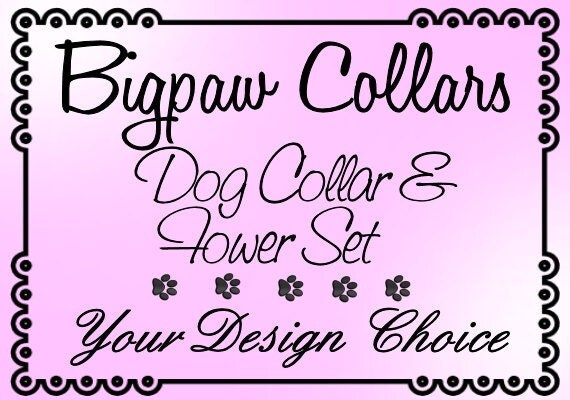 Custom Dog Collar and Flower Set - Your Design Choice