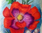 Red Flower Colored Pencil Drawing Painting 6 x 9 inch