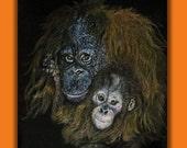 Scratchboard Art Orangutan and Baby, 11 x 14 Scratch Art w Colored Pencil, Origninal Wall Hanging,