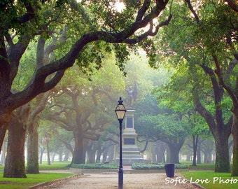 Battery Park, Charleston SC Photograph